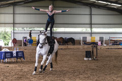 Horse Vaulting Equestrian Woman Royalty Free Stock Image