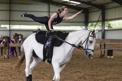 Horse Vaulting Woman Equestrian Royalty Free Stock Image