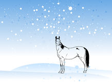 Horse vector on christmas Stock Images