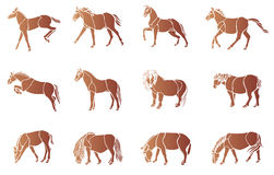 Horse vector collection Royalty Free Stock Images