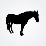 Horse - vector illustration Royalty Free Stock Images