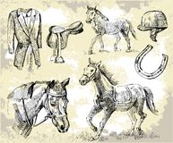 Horse vector shapes Royalty Free Stock Photography