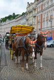 Horse vehicle for driving of tourists in Karlovy Vary, the Czech Stock Photos