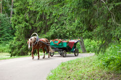 Horse vehicle in park. Pavlovsk. Royalty Free Stock Image