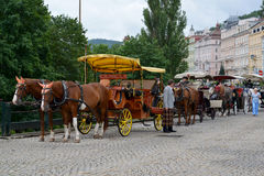 Horse vehicles for driving of tourists in Karlovy Vary, the Czec Royalty Free Stock Photo