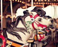Horse in a vintage carousel. Horse in a vintage pastel carousel Royalty Free Stock Photography
