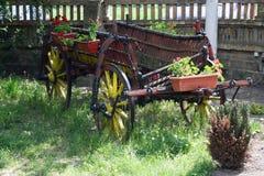Horse wagon Royalty Free Stock Photo