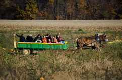 Horse and wagon ride Royalty Free Stock Photo