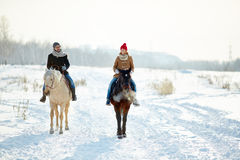 Free Horse Walk Stock Photography - 63485462