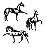 Horse walking (graphic silhouettes) Royalty Free Stock Photos
