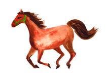 Horse watercolor illustration Stock Photo