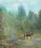 Horse at the waterfall Royalty Free Stock Images