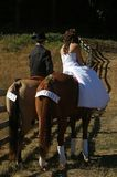 Horse Wedding. Newly weds on horses with just married on their tails Royalty Free Stock Photos