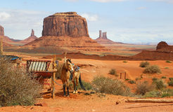 Horse in western scenery Stock Photo