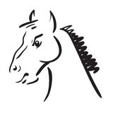 An horse on white background Royalty Free Stock Photo