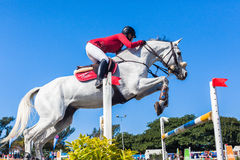 Equestrian Horse White Woman Red Jump Poles