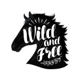 Horse. Wild and free, lettering. Typographic design vector illustration. Isolated on white background Stock Photography