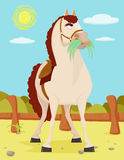 Horse in the Wild West Illustration. Horse in the Wild West in a modern style illustration Royalty Free Stock Image
