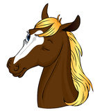 Horse wink!. Cute brown horse with blond mane winking at the viewer Stock Image