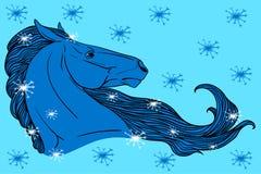Horse winter Stock Photo