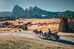 Free Horse With Carriage Ride On Road During Calm Morning In Famous Alpe Di Siusi/ Seiser Alm Landscape Royalty Free Stock Photography - 177965157