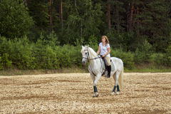 Horse and woman Stock Images