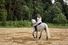 Horse and woman Stock Photos