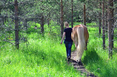 Horse and woman. Brown horse and woman walking on forest Stock Images
