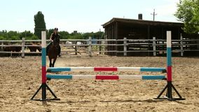 Horse woman jumps through the barrier on horseback slow motion stock video footage