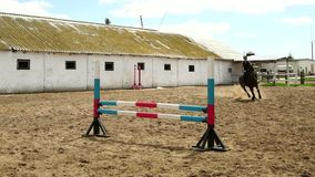 Horse woman jumps through the barrier on horseback slow motion stock video