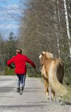 Horse and woman walking Stock Images
