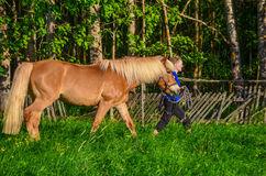 Horse and woman walks Stock Photography