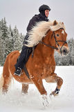 Horse and woman in winter Royalty Free Stock Image
