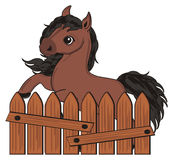 Horse and wooden fence. Funny brown horse stick out from brown fence Stock Image
