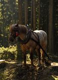 Horse working Royalty Free Stock Images