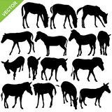 Horse and Zebra silhouettes vector Stock Image