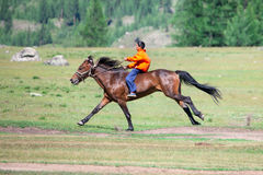 On horseback across the steppe Royalty Free Stock Photos