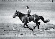 On horseback across the steppe Stock Photography