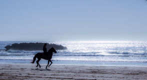 On horseback. On horseback along the shore of the ocean - a healthy lifestyle royalty free stock photos