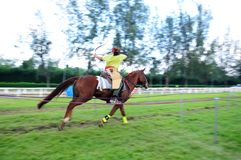 Horseback Archery Competition Royalty Free Stock Images