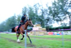 Horseback Archery Competition Stock Images