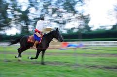 Horseback Archery Competition Royalty Free Stock Photos