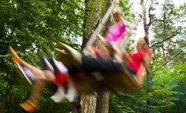 Horseback balanço da floresta. Imagem de Stock
