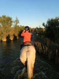 On horseback in the Camargue area, France Royalty Free Stock Photo