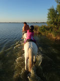 On horseback in the Camargue area, France Royalty Free Stock Images