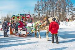Horseback die op het feest van Carnaval berijden Berdsk, Siberië, Russ Stock Foto