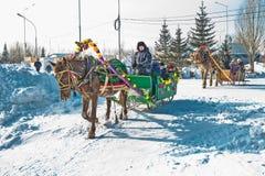 Horseback die op het feest van Carnaval berijden Berdsk, Siberië, Russ Stock Foto's