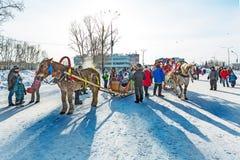 Horseback die op het feest van Carnaval berijden Berdsk, Siberië, Russ Royalty-vrije Stock Fotografie