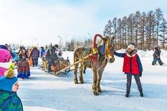 Horseback die op het feest van Carnaval berijden Berdsk, Siberië, Russ Royalty-vrije Stock Foto's