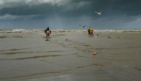 Horseback garnalenvissers Stock Foto's
